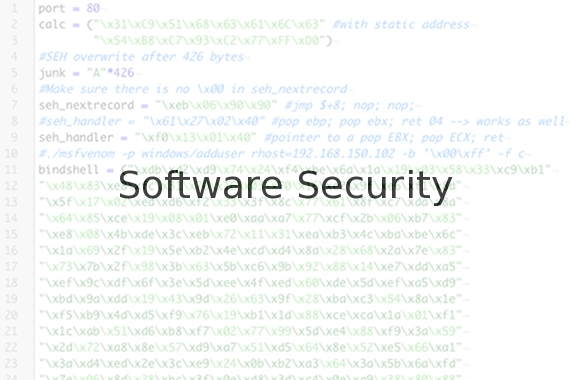 software-security